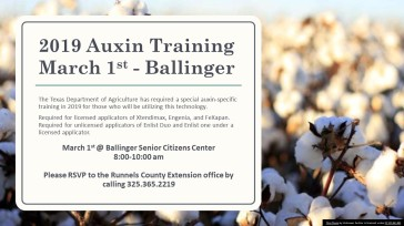 Auxin Training